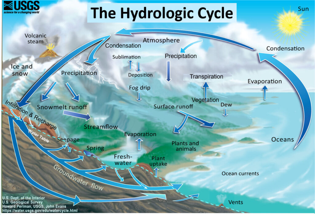 The Earth's water cycle