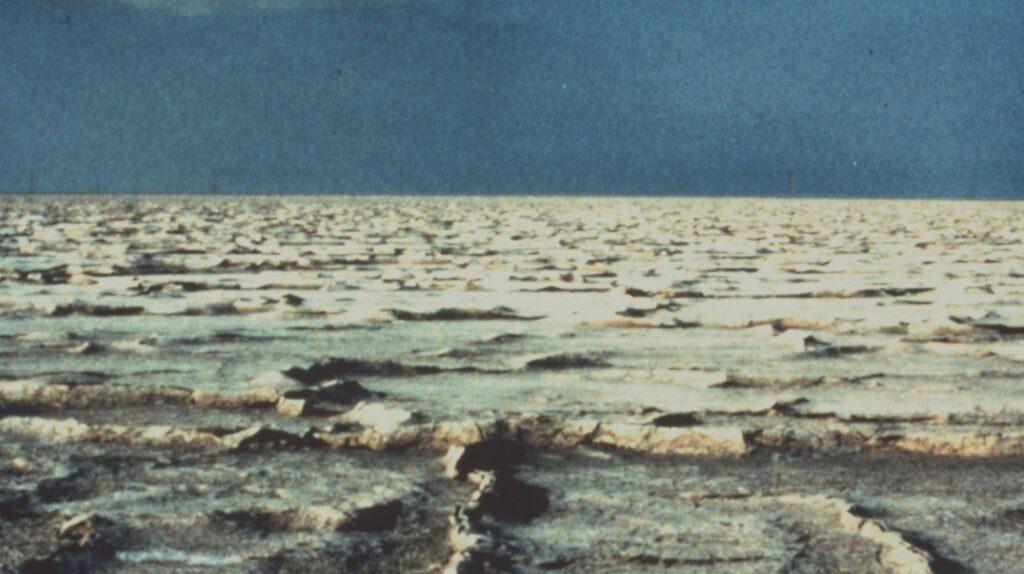 Photo showing salt flat in the Emirates of Abu Dhabi, United Arab Emirates.