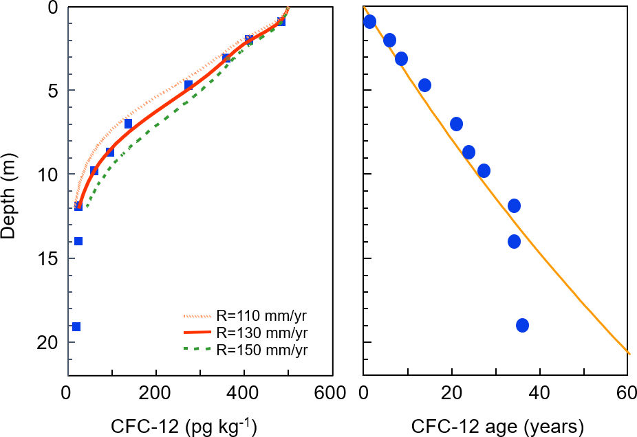 Measured CFC 12 concentrations, and apparent CFC 12 ages measured in a vertical profile obtained from the Sturgeon Falls aquifer, Canada, in 1993